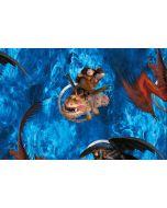 Canvas Stoff mit Dragons - Drachenzähmen leicht gemacht Motiv