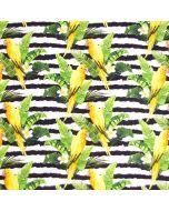 Lässig bunter, schwarz-weiss gestreifter Jersey Stoff mit bunten Kakadu - Papagei-Muster. Der Stoff ist perfekt für sommerliche Bekleidung, Unterwäsche, Nachtwäsche.