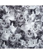 Lässiger Canvas Stoff in schwarz-weiss mit süssen Katzenmotiven für Taschen, Rucksäcke, Deko, Trennwände und Utensilos.